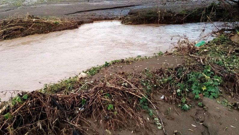 Bomba d'acqua su Caserta, campi allagati e stalle distrutte