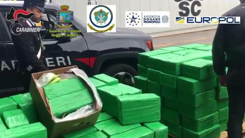 Sequestrata una tonnellata di cocaina nel porto di Gioia Tauro: era diretta alla 'ndrangheta - VIDEO