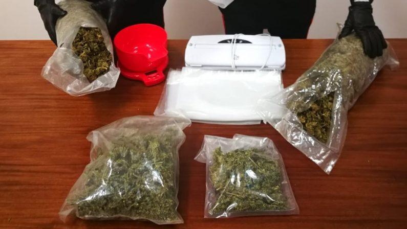 Spacciatori vicini di casa arrestati a Catanzaro con 2,5 chili di droga