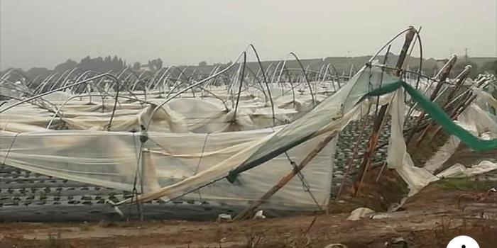 Maltempo in Calabria: tromba d'aria a Cariati, distrutti 6 ettari di serre