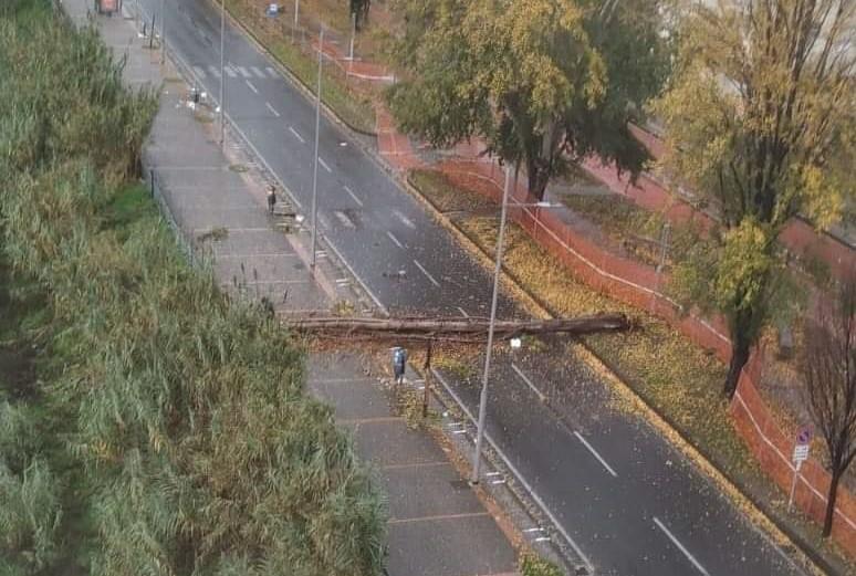 Il maltempo infuria in Calabria, danni a Cosenza, tromba d'aria a Reggio