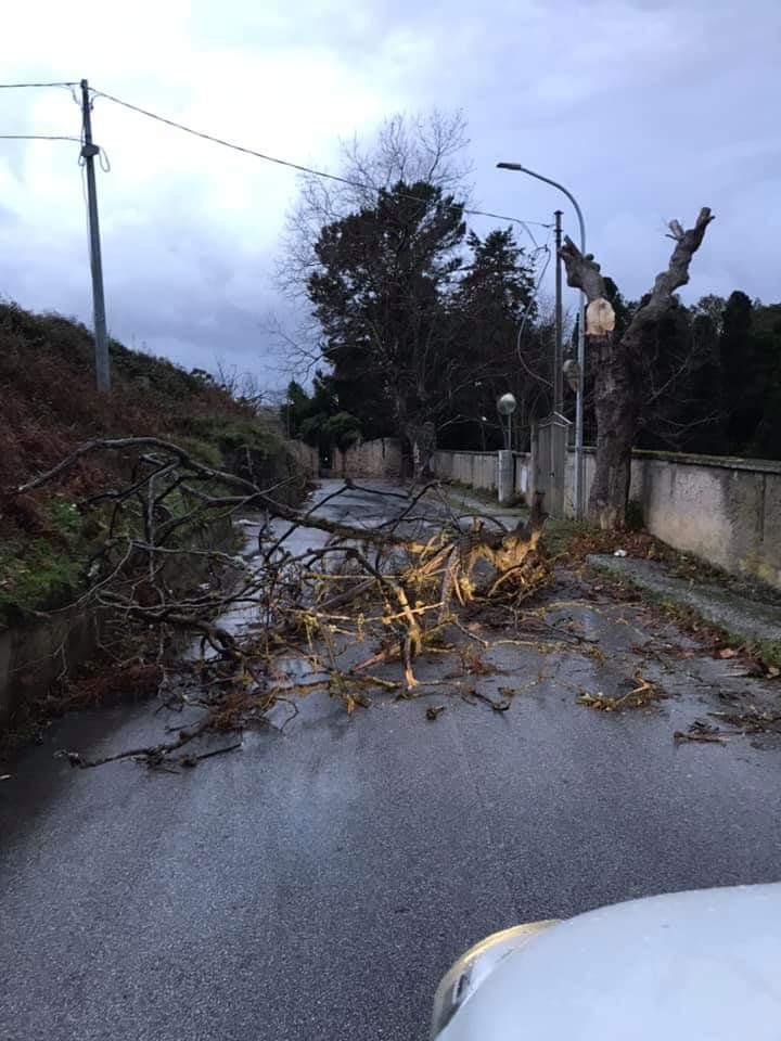 Il Comune di Vibo chiede lo stato di calamità naturale per il maltempo dei giorni scorsi