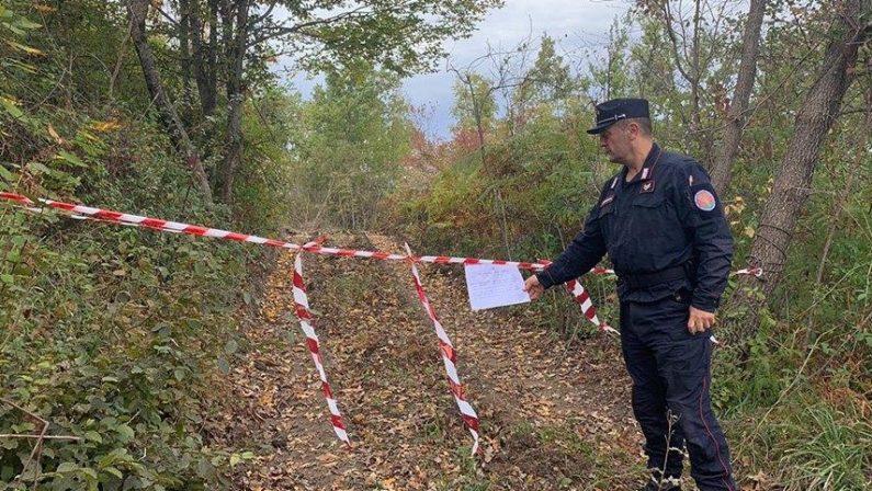 """Tagli di boschi e un caseificio """"abusivo"""". Sequestri a Grisolia, Aieta e Verbicaro"""