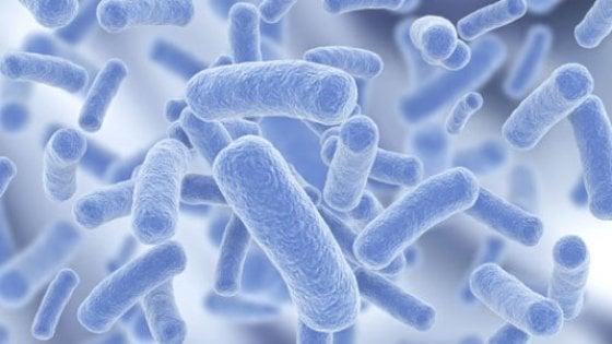 Legionella, un morto in ospedale a Polla