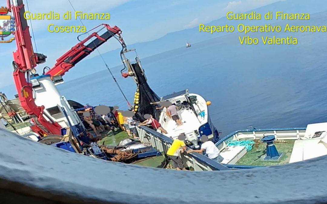 Estorsione e minacce ai pescatori di tonno, arrestate quattro persone in un'inchiesta della Procura di Paola
