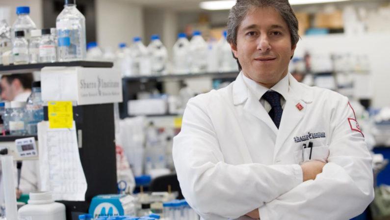 Antonio Giordano, oncologo e genetista di fama mondiale: Il picco? Difficile prevederlo