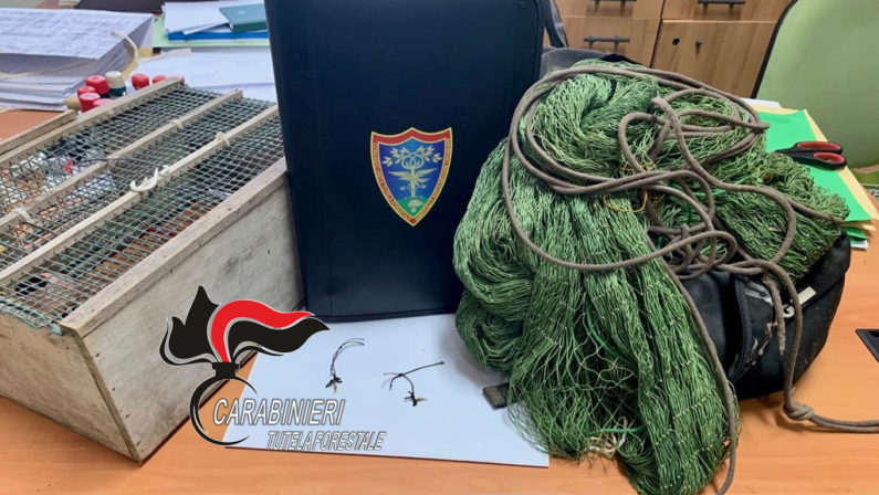 Marigliano: tutela della fauna, carabinieri denunciano 46enne