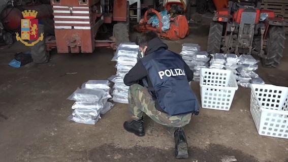 'Ndrangheta: nascondeva oltre 530 chili di cocaina, arrestato il figlio del boss Molè