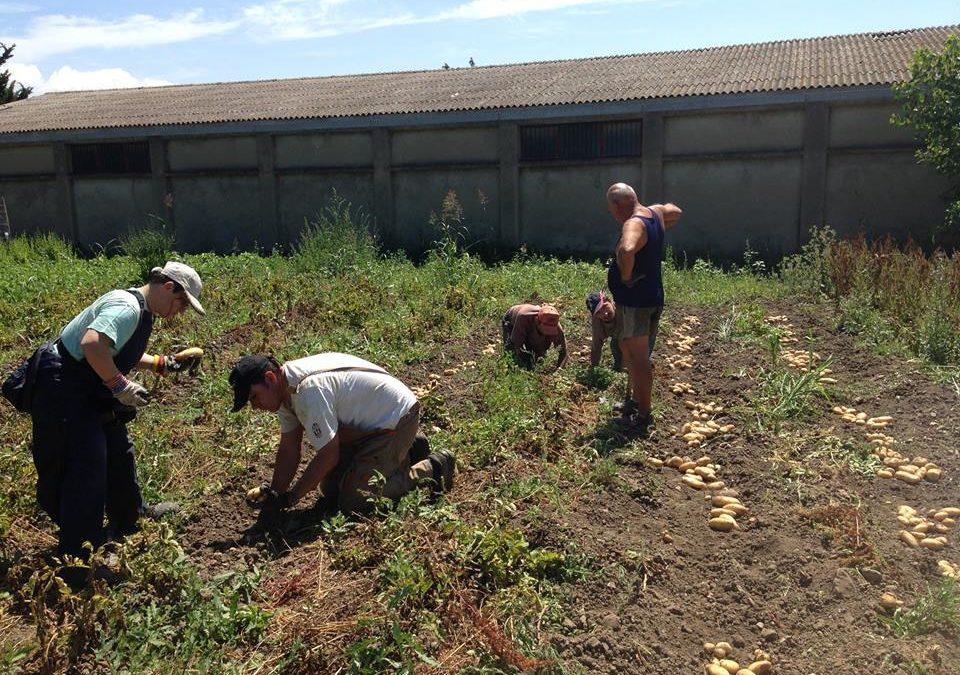 I componenti della cooperativa impegnati nella coltivazione