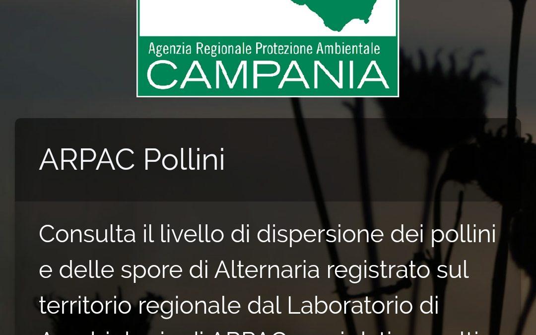 ARPAC, Pollini: ecco l'app che informa sulle concentrazioni in Campania