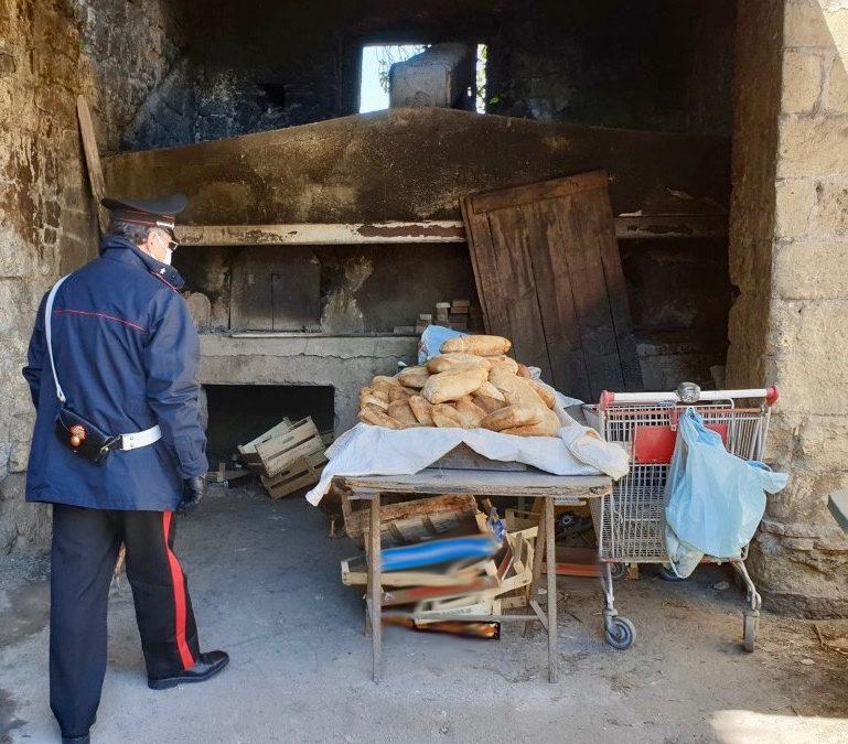 Denunciati fratello e sorella per panificazione abusiva, sequestrati 60 chili di pane appena sfornati