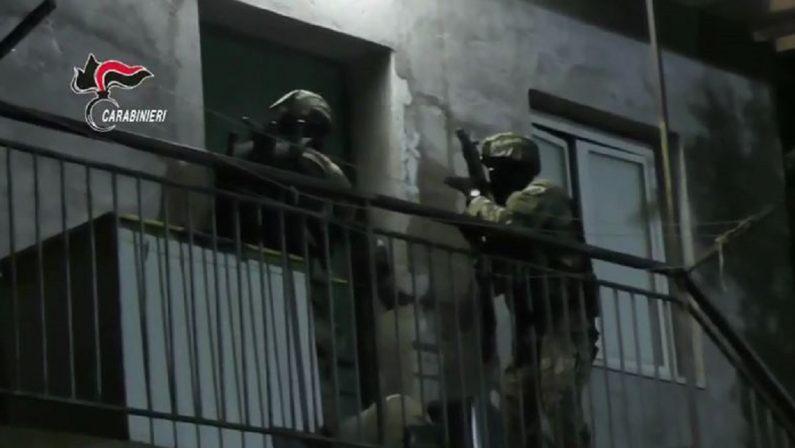 Lotta alla 'ndrangheta, arrestato il latitante Giofrè nelle campagne del Vibonese VIDEO