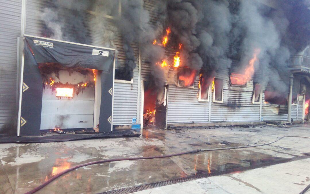 FOTO – L'incendio nel salumificio di Spilinga (Vibo Valentia)