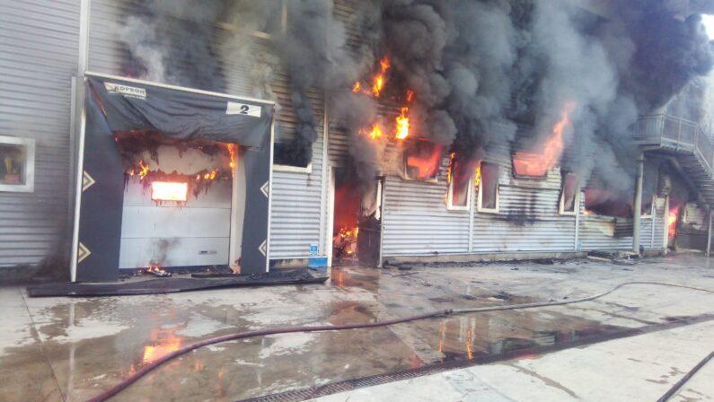 FOTO - L'incendio nel salumificio di Spilinga (Vibo Valentia)