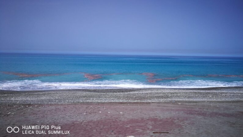 FOTO E VIDEO NOTIZIA - Mare sporco a Paola...e non è schiumetta