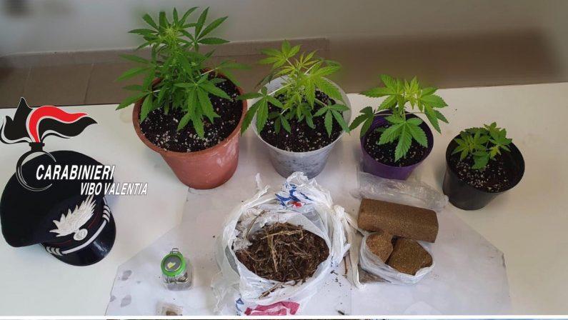 Droga venduta in cambio di sesso, chiuse le indagini per 23 tra Brienza, Marsicovetere, Paterno, Sant'Angelo e il salernitano