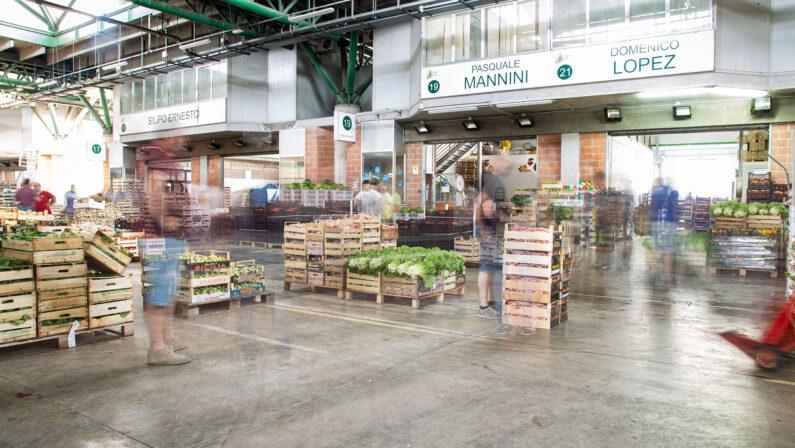 Intimidazione al centro agroalimentare di Catanzaro, furti e danneggiamenti