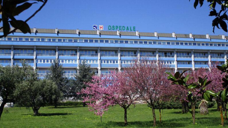 Assenteismo all'ospedale di Lamezia, dipendente sospeso per un anno. Denunciato anche il direttore Gallucci