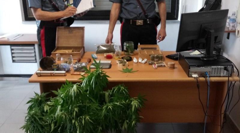 Produzione e spaccio di droga, arrestati tre uomini e una donna nel Cosentino