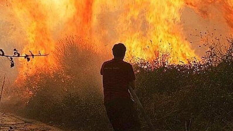 Fine settimana di fuoco nel Cosentino, i pompieri intervengono su oltre 40 incendi