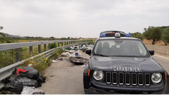 Ambiente: rifiuti e prodotti scaduti gettati nei pressi di una strada, denunciato commerciante nel Catanzarese