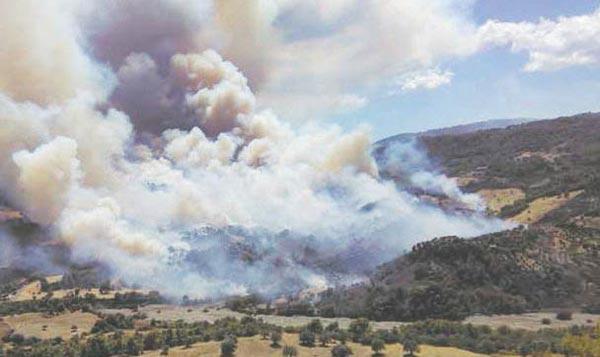"""""""Incendi, grave pericolosità"""""""