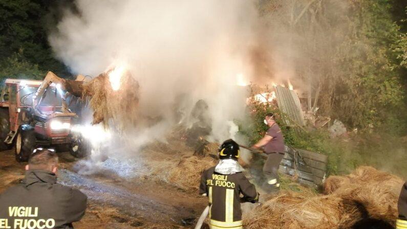 Incendio ad Arena nel Vibonese, distrutto un fienile e lambita una stalla piena di animali