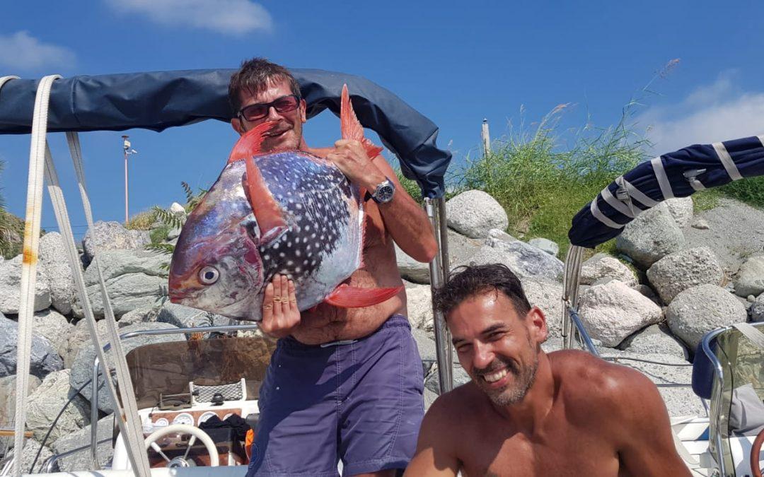 Il raro esemplare di Pesce Re pescato nel Cosentino