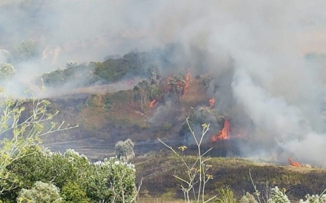L'area interessata dall'incendio