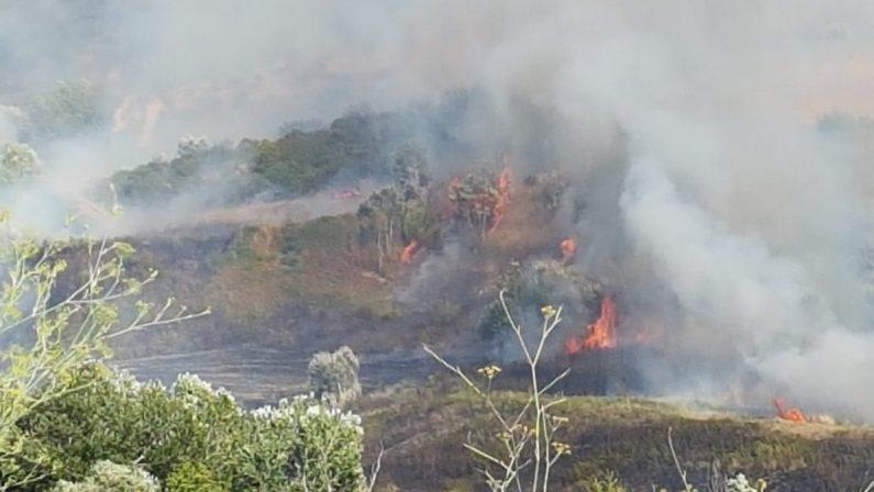 VIDEO NOTIZIA - Vasto incendio nelle campagne tra Cosenza e Castrolibero