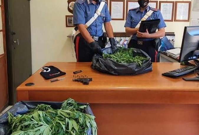 Un sequestro di marijuana
