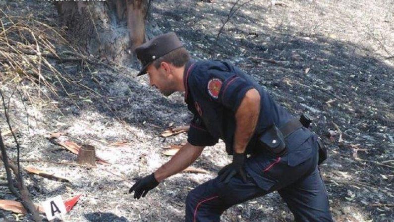 Incendio nel Cosentino, i carabinieri individuano e denunciano i responsabili