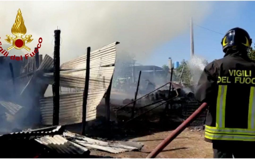 Il fienile distrutto dall'incendio