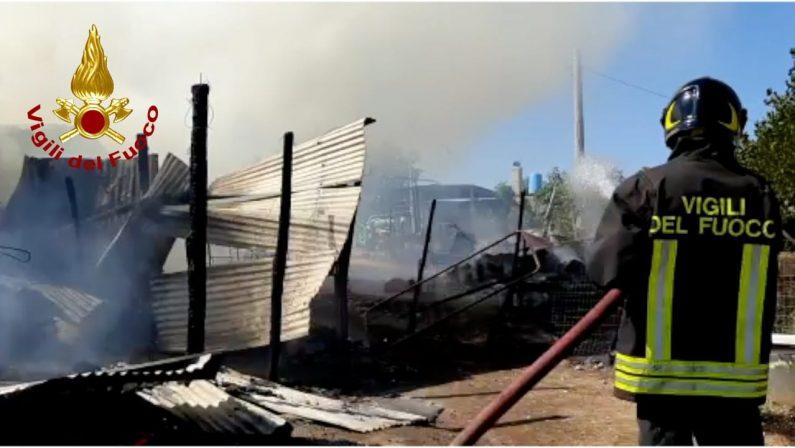 Fienile distrutto completamente da un incendio nel Cosentino, indagini sulle cause - VIDEO