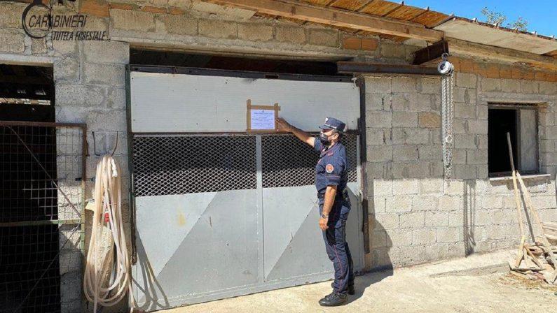Due fabbricati abusivi sequestrati nel Cosentino, deferite quattro persone