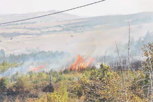 Incendi, Irpinia sotto assedio