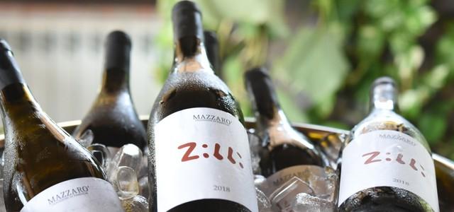 """Vino: successo per la produzione calabrese, piace """"Zibbi"""" prodotto a Catanzaro"""