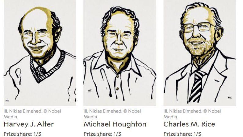 Il Nobel per la Medicina assegnato a tre virologi per studi sull'Epatite C