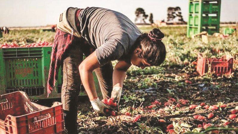Il lavoro degli stranieri regolari: Campania al primo posto in Italia