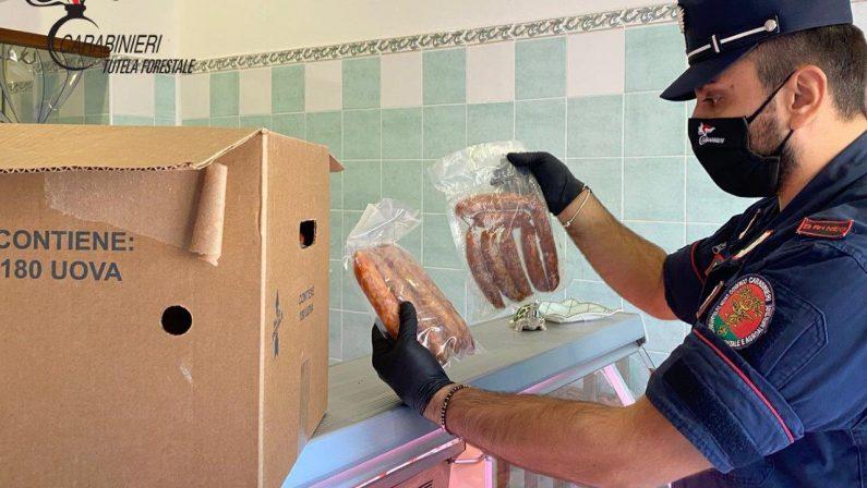 Carne scaduta in macelleria, sequestri e sanzioni nel Cosentino