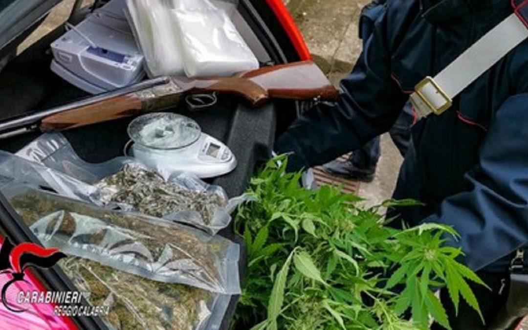 La marijuana e il fucile scoperti dai carabinieri