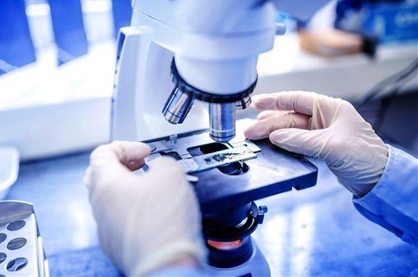 Coronavirus nel Reggino, dodici casi positivi a Motta San Giovanni
