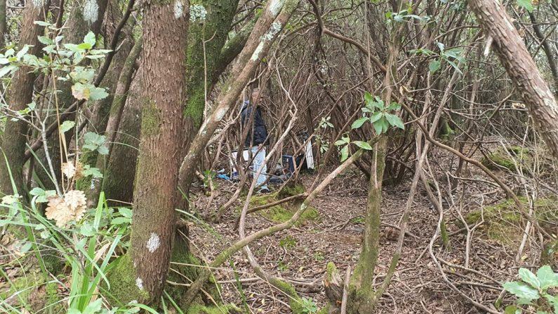 Cadavere nelle campagne vibonesi, svolta nell'indagine: il corpo è di Antonino Loielo. Indagati i due figli