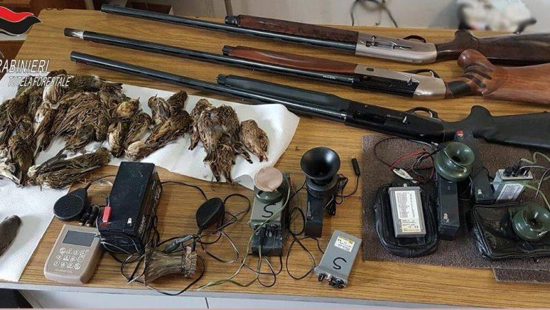 Turismo venatorio, denunciate otto persone nella provincia di Cosenza che praticavano la caccia con mezzi illegali