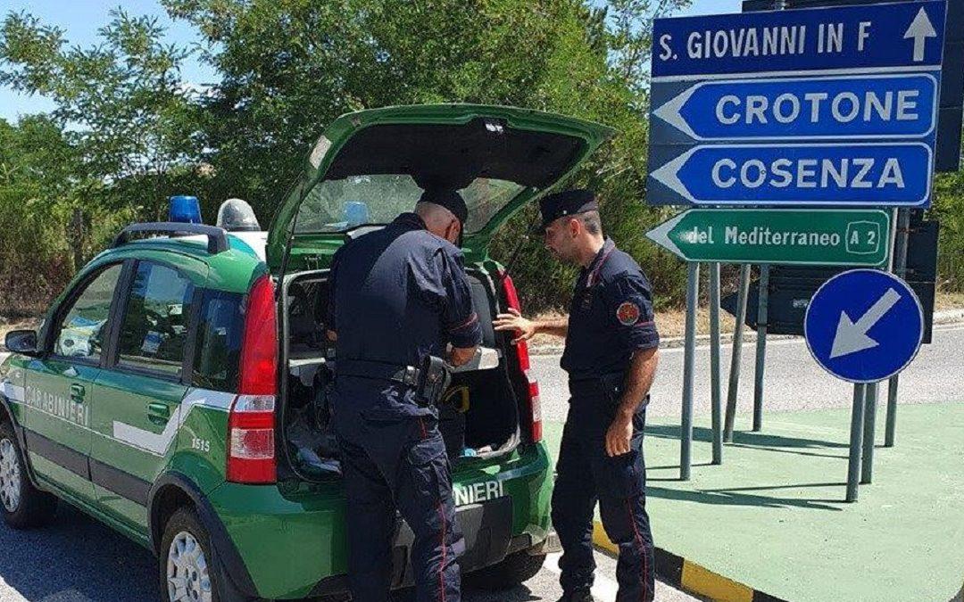 I Carabinieri Forestale