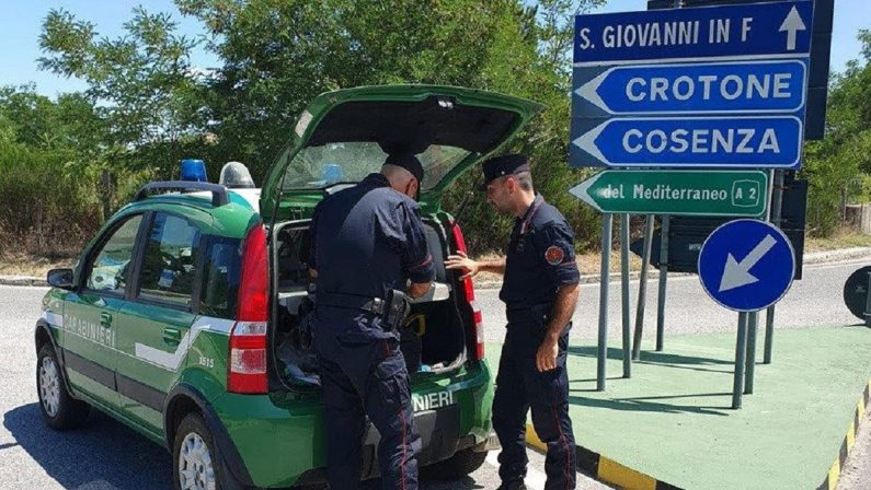 Incendio doloso a San Giovanni in Fiore, un uomo incastrato dalle immagini di videosorveglianza