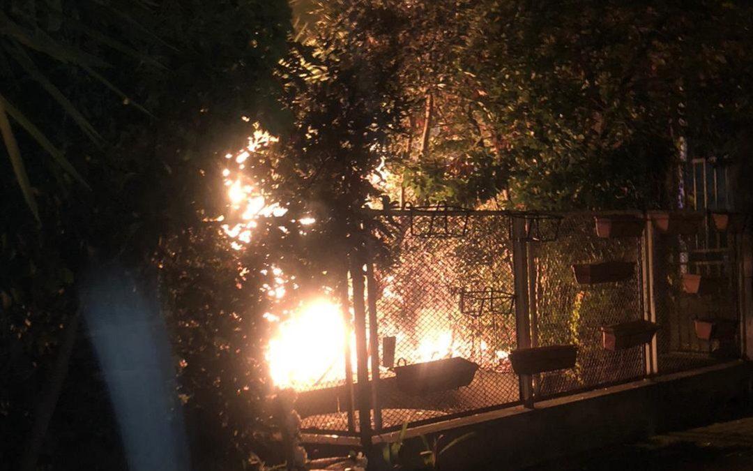 L'incendio divampato in un giardino a Paola