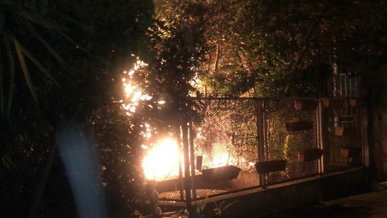 Nella notte a Paola va a fuoco un giardino, la casa è salva grazie a una cagnolina