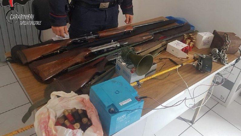 Tre cacciatori, provenienti dalla Toscana, denunciati nel Cosentino per utilizzo di richiami vietati