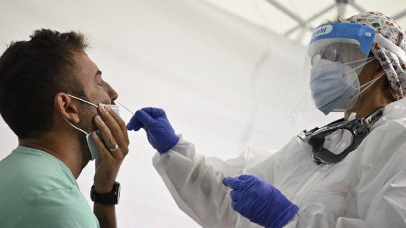 """Coronavirus, in Calabria domina la variante inglese. Ma ci sono anche quelle """"inedite"""""""